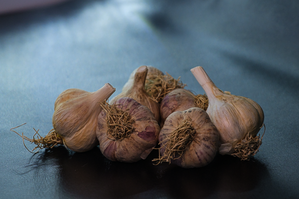 You are currently viewing Garlic Gathering Theme to the Farmers Market