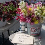 Snapdragons at Valley View Farms